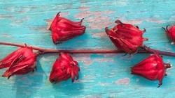 9 Manfaat Rosella untuk Kesehatan, Mau Tahu?