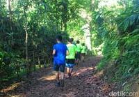 Desa ini juga memiliki destinasi wisata hutan pinus yang berhawa sejuk dengan pemandangan indah yang dikenal dengan Puncak Asmoro. Puncak Asmoro menawarkan keindahan pemandangan tiga gunung yang ada di Banyuwangi yakni Ijen, Raung dan Meranti hingga perairan Selat Bali. (Ardian Fanani/detikcom)