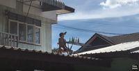 Usai Makan di Tengah Hujan, Pria Ini Lanjut Minum di Atas Genteng!