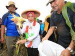 Rekatkan Toleransi, Kemendes Mau Gelar Forum Perdamaian di Situbondo