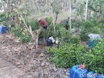 Kemarau di Gunungkidul, Warga Manfaatkan Air dari Bocornya Pipa PDAM
