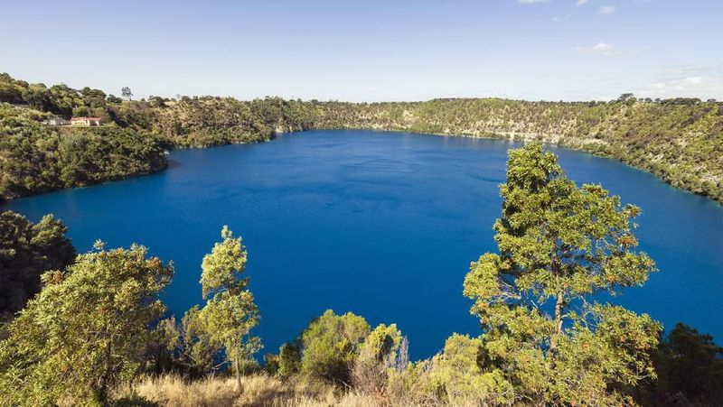 Inilah Blue Lake, danau yang berada di kawasan Taman Nasional Nelson Lakes, dekat dengan pegunungan Alpen di selatan Selandia Baru. (iStock)