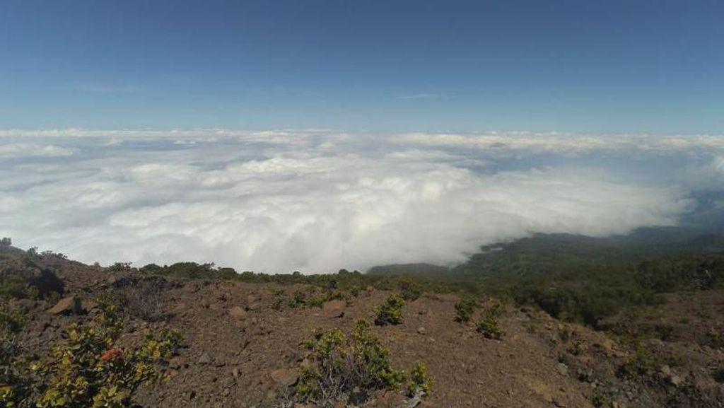 Sensasi Mendaki Gunung Slamet via Jalur Baturaden