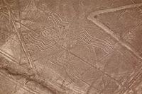 Nazca Line yang menyerupai berbagai simbol (iStock)