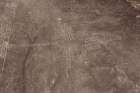 Gambar Nazca Lines yang diyakini berbentuk burung kolibri (iStock)