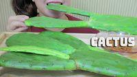 Gokil! 3 Youtuber Ini Berani Makan Kaktus Mentah
