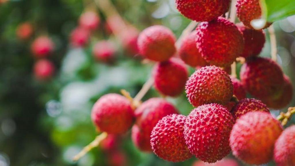 5 Kasus Buah Mematikan, Apel hingga Leci Beracun