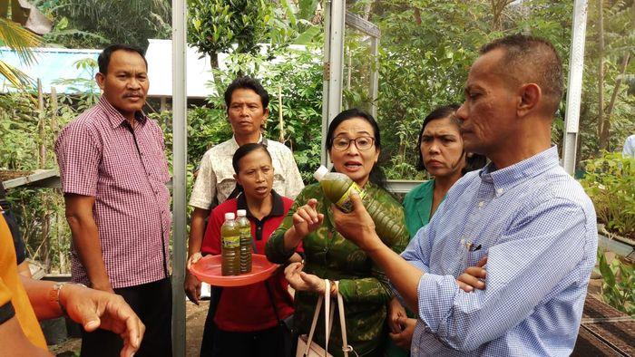 Kepala BKP Agung Hendriadi saat mengunjungi KRPL Gianyar Bali, Foto: Dok Kementan