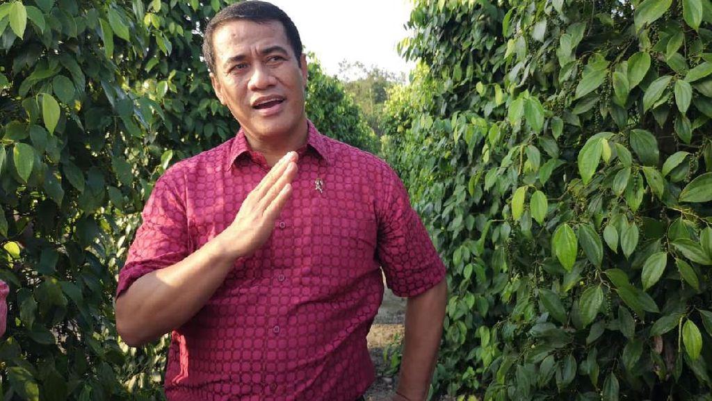 DPD Nilai Kementan Berhasil Genjot Ekspor Pertanian