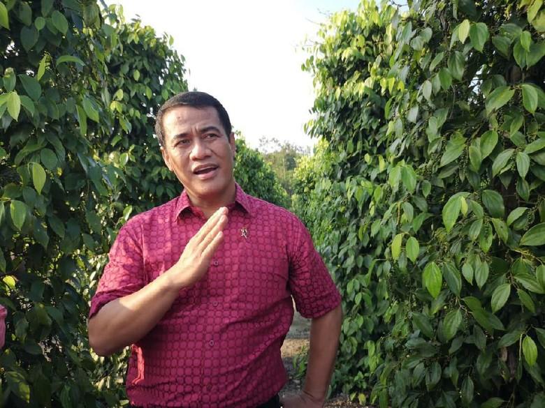 Kementan: Pencopotan Pejabat Terkait Suap Impor Bawang untuk Mitigasi