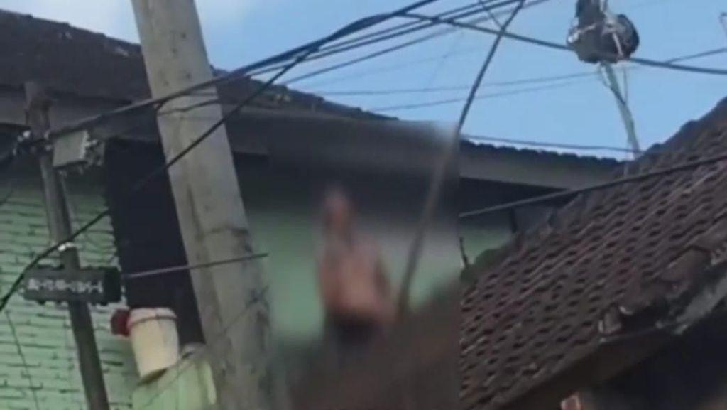 Heboh Bule Ngomel-ngomel di Atap Rumah di Ubud, Ini Kata Polisi