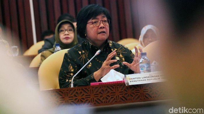 Menteri LHK Siti Nurbaya/Foto: Lamhot Aritonang