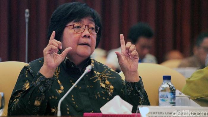 Menteri Lingkungan Hidup dan Kehutanan Siti Nurbaya. (Lamhot Aritonang/detikcom)