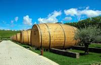Ada 10 kamar berbentuk tong di perkebunan anggur ini. Kamar-kamar ini didesain oleh Paulo Pereira dan Maria do Cey Goncalves, yang juga merupakan pemilik Quinta de Pacheca (booking.com)