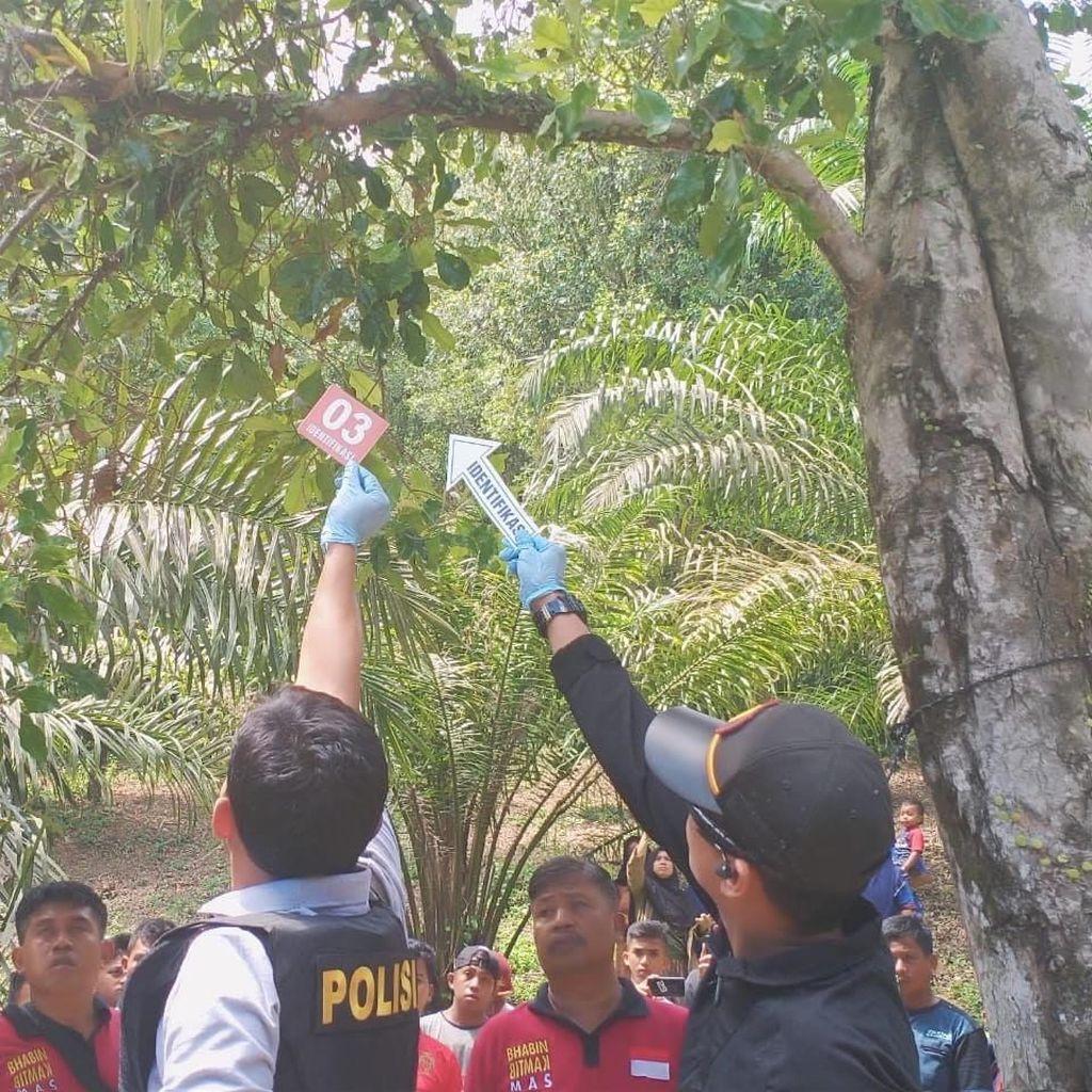 Pria Pembunuh Kekasih dan Gantung Mayat di Pohon Ditangkap Polres Mamuju