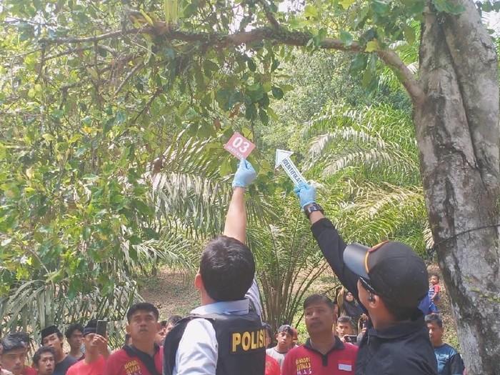Lokasi penemuan mayat perempuan yang dibunuh kekasihnya di Mamuju Tengah, Sulbar, Senin (24/6/2019). (Foto: Dok. Humas Polda Sulbar)