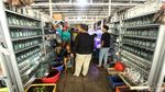 Penjual Ikan Hias di Trotoar Jatinegara Direlokasi