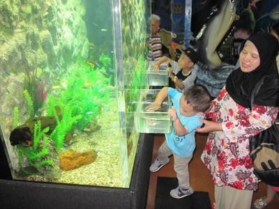 Liburan Sekolah di Sea World Ancol