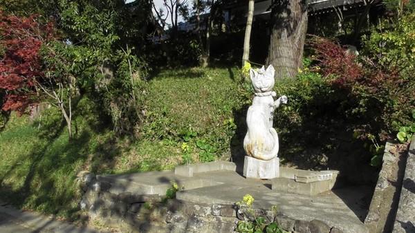 Sesuai dengan namanya, saat memasuki kuil traveler akan disambut oleh beberapa patung kucing yang berjejer di anak tangga. (Unjrinji/Facebook)