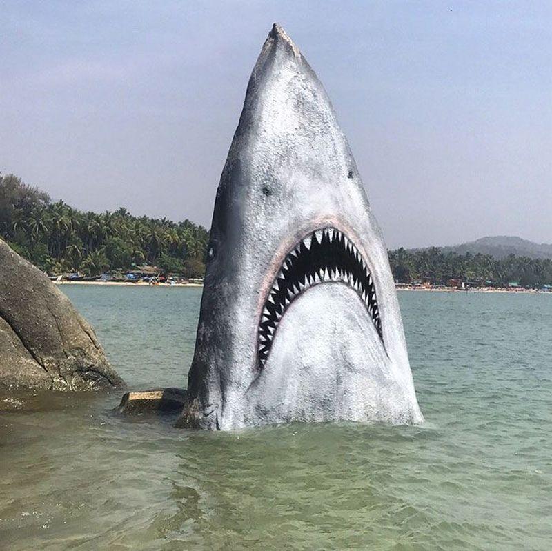 Ini adalah hiu yang dilukis pada batu karang Pantai Palolem di Goa Selatan, India. (jimmy_swift/Instagram)