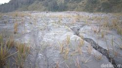 Suguhan Embun Beku di Gunung Bromo Gugah Wisatawan Berdatangan
