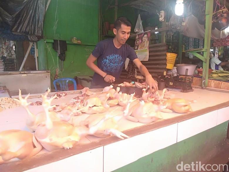 Pedagang Ayam Eceran Untung Banyak Saat Harga di Peternak Anjlok