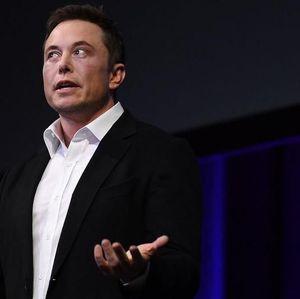 Proyek Gila Elon Musk: Tanamkan Chip di Otak Manusia