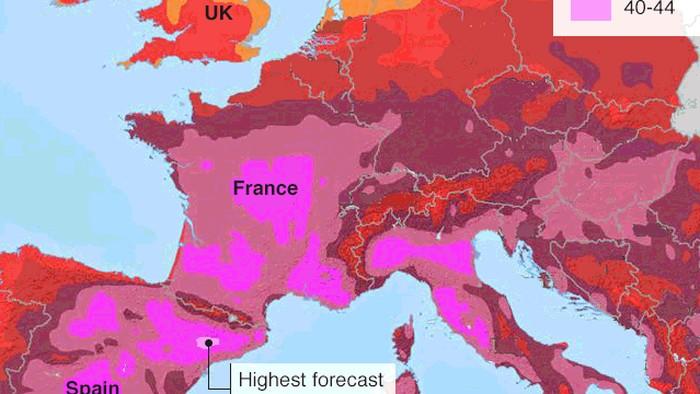Gelombang panas yang menerjang Eropa. Foto: (Reuters)