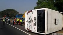 Bus Tentrem Terguling di Tol Sidoarjo, Tiga Penumpang Terluka