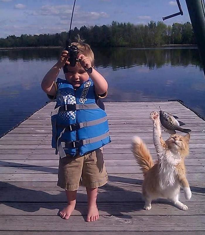 Diajak mancing, kucing imut ini tak bisa menahan rasa lapar dan memutuskan untuk mencuri ikan segar yang baru saja ditangkap oleh majikannya. Foto: Boredpanda