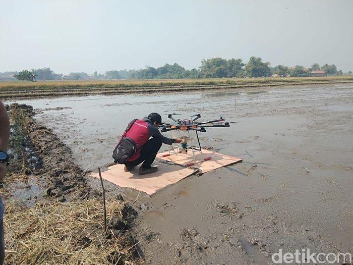 Ini drone yang digunakan untuk menanama benih padi.