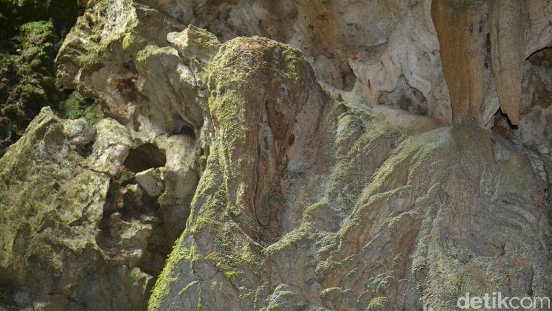 Batu mirip kepala gajah itu pertama kali ditemukan wisatawan di dalam objek wisata Goa Seplawan, Desa Donorejo, Kecamatan Kaligesing, Purworejo. (Rinto Heksantoro/detikcom)
