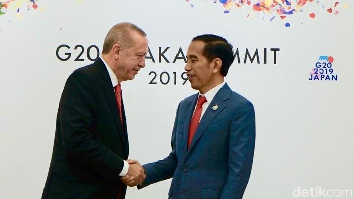Jokowi dan Erdogan di KTT G20 Osaka (Ray Jordan/detikcom)
