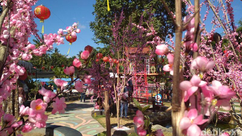Merasakan suasana Jepang, tak perlu jauh-jauh. Di Blitar, ada taman yang ditata dengan Bunga Sakura. (Erliana Riady/detikcom)