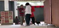 Sikap MUI dan Takmir soal Update Kasus Anjing Masuk Masjid