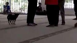 Polisi Perbaiki Berkas Perkara Wanita Bawa Anjing ke Masjid