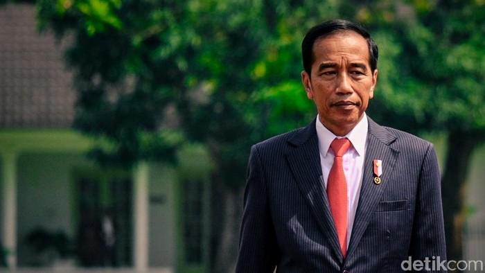 Jokowi mengonsumsi ramuan temulawak, jahe, dan kunyit setiap hari selama 18 tahun. Foto: Jokowi (Andhika Prasetia/detikcom)