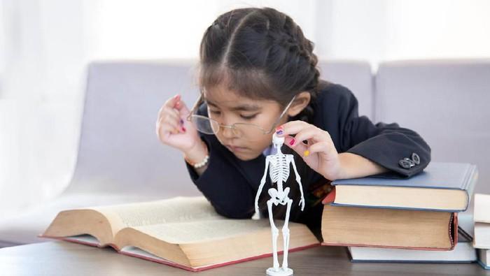 ilustrasi tulang anak