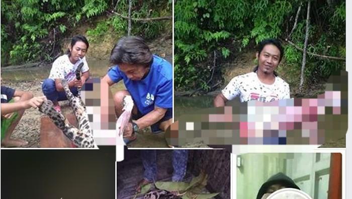 Macan dahan yang dikuliti orang, fotonya viral. (Screenshot Facebook)