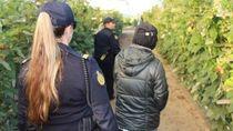 Belasan Pekerja Gelap dan Calo Pekerja Asing Ditangkap di Australia