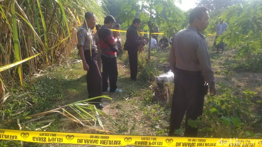Seorang Pria Ditemukan Tewas Terluka di Kebun Pepaya, Polisi Selidiki