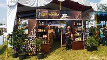 Mengenal Ragam Kopi Khas Setiap Kecamatan di Festival Kopi Ciamis