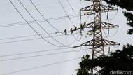 Listrik di Wilayah Jateng-DIY Padam Ternyata Gegara Benang Layangan