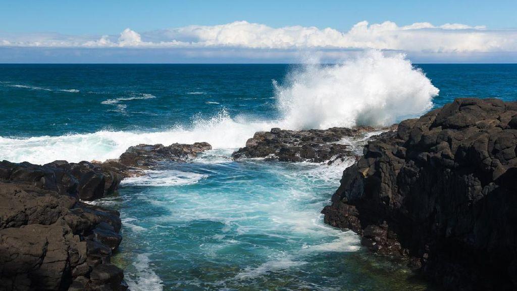 Lagi Asyik Foto, 2 Turis Berbikini Disapu Ombak di Hawaii