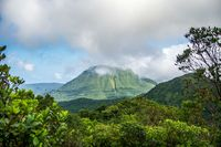 Kalau Dominika, punya hutan tropis yang menawan (iStock)