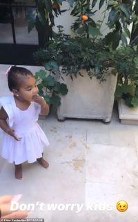 Khloe Kardashian Biarkan Putrinya Makan Jeruk Kumquat Langsung dari Pohon