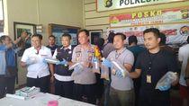 Penyelundupan Baby Lobster Jambi-Singapura Senilai Rp 12 M Digagalkan