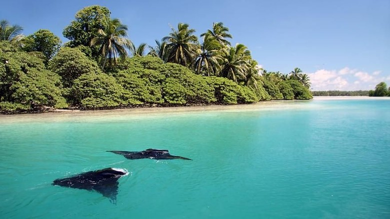 Pulau terluar milik AS (CNN)