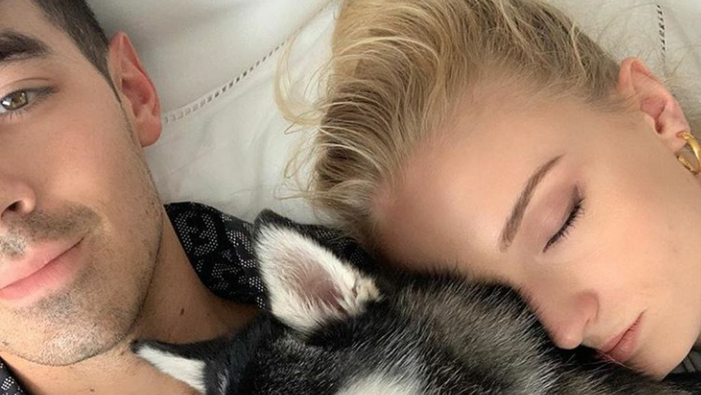 Joe Jonas dan Sophie Turner Kunjungi Terapis Setelah Kematian Anjingnya