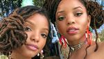 Fakta Halle Bailey, Pemeran Ariel the Little Mermaid